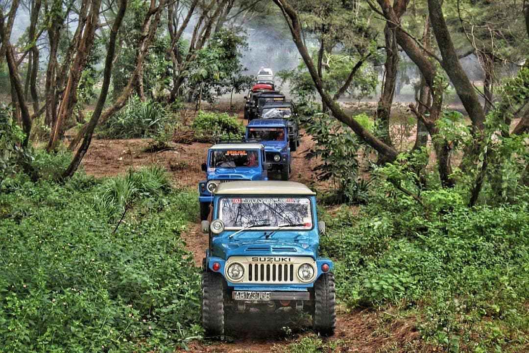 Wisata jeep pantai goa cemara