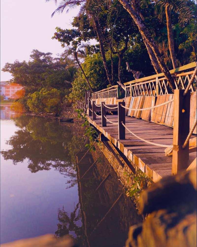 Jembatan kayu